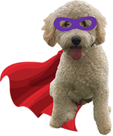 Super Hore Dog