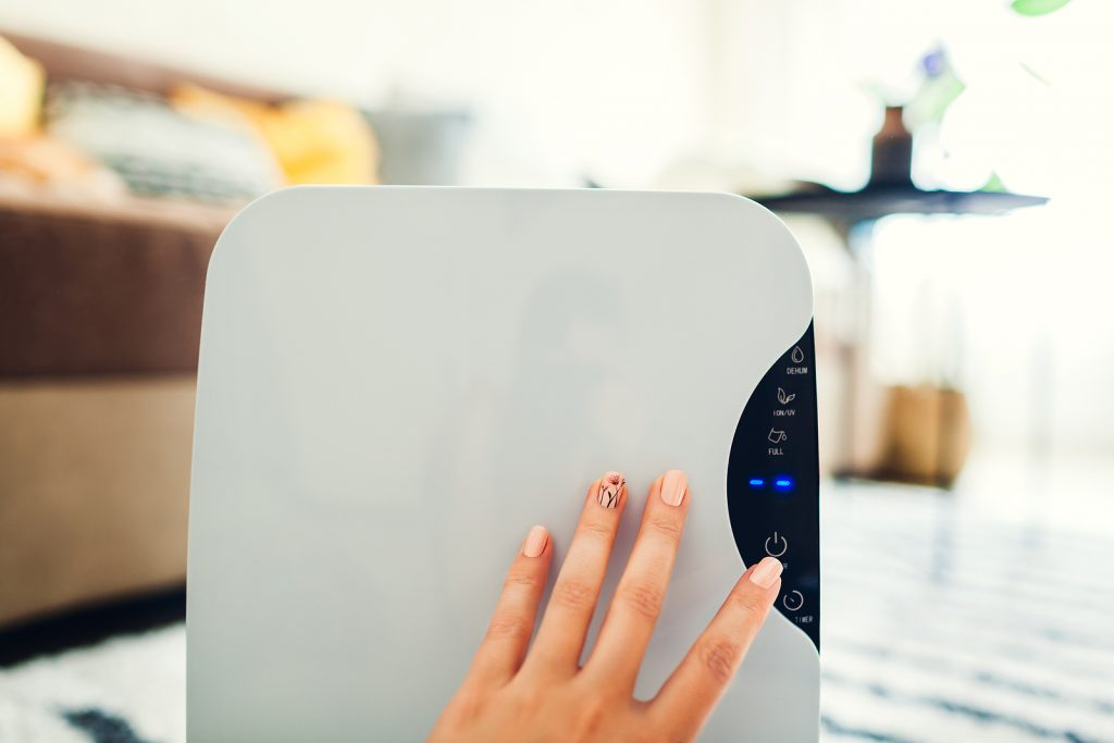 What Determines the Cost of a Whole-Home Dehumidifier